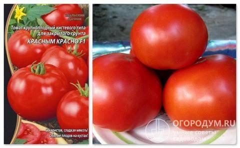 Томат «красным красно»: характеристика и описание сорта