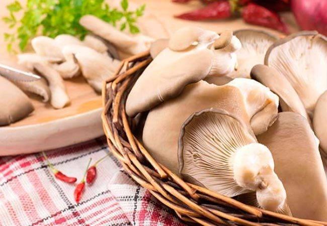 Какие грибы можно есть в сыром виде. можно ли есть сырые шампиньоны   дачная жизнь