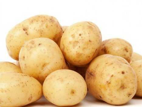 Белорусские сорта картофеля: характеристика и описание, ранние и поздние сорта, фото