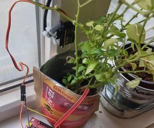 Как изготовить автополив для комнатных растений своими руками?