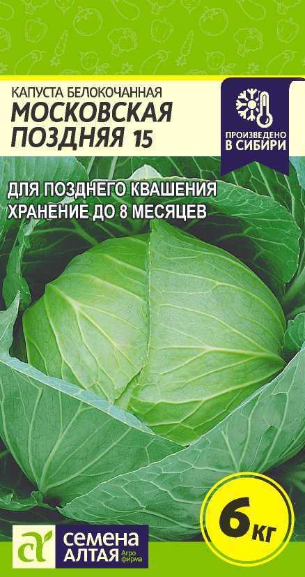 Капуста московская поздняя — описание сорта, фото, отзывы, посадка и уход