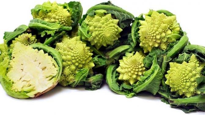 Цветная капуста и брокколи — чем они отличаются