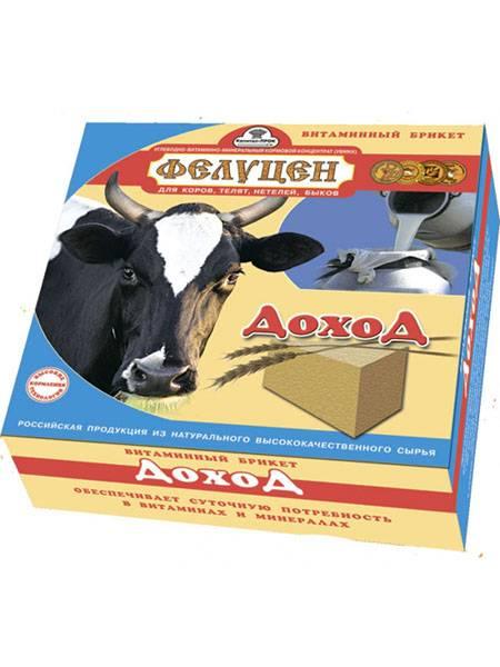 Обзор видов комбикормов для крупного рогатого скота
