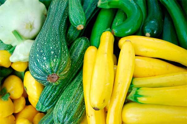 Калорийность кабачки. химический состав и пищевая ценность.