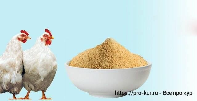 Пищевые добавки - статьи о ветеринарии «свой доктор»