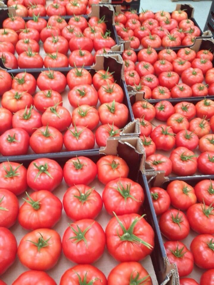Томат биг биф f1: описание характеристик сорта помидора с фото