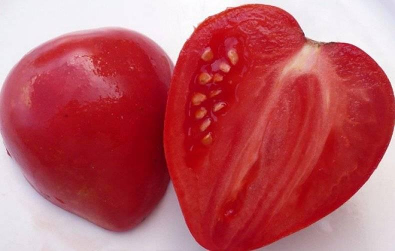 Томат мазарини: описание, характеристика, урожайность сорта, особенности выращивания помидоров, отзывы тех, кто сажал, фото