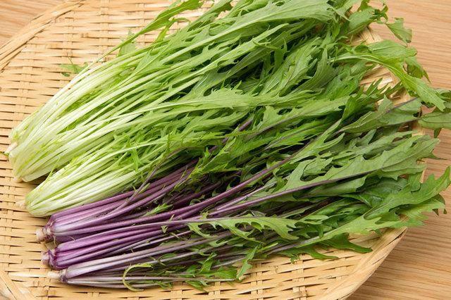 Японская капуста: декоративные сорта мизуна, русалочка и изумрудный узор, а также выращивание овоща из семян и благоприятные условия для этого русский фермер