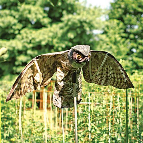 Как избавиться от голубей: 8 лучших репеллентов и отпугивателей для защиты дома