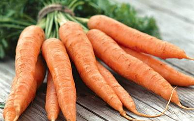 Почему у моркови оранжевый цвет - огород, сад, балкон - медиаплатформа миртесен