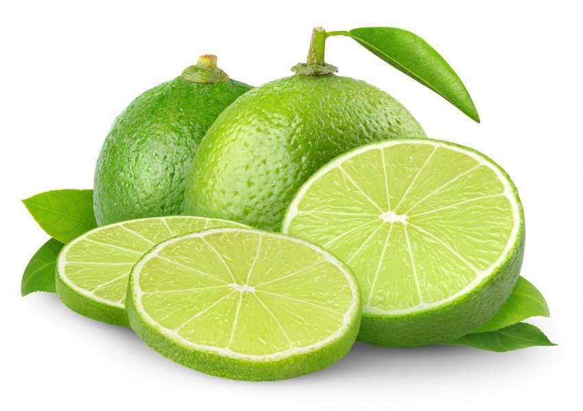 Как обрезать лимон: правила, сроки и рекомендации по выбору инструмента. 115 фото и видео инструкция по уходу за лимоном