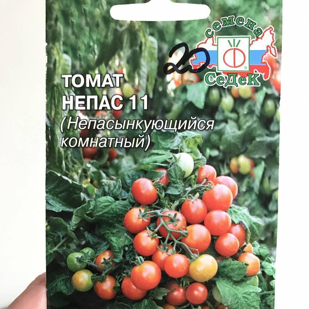 Томат непас 14 непасынкующийся сахарный седек: описание сорта, рекомендации по выращиванию, посадке, отзывы о помидоре