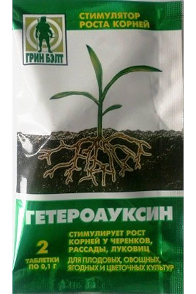 Гетероауксин: инструкция по применению стимулятора для комнатных растений (рассады), отзывы