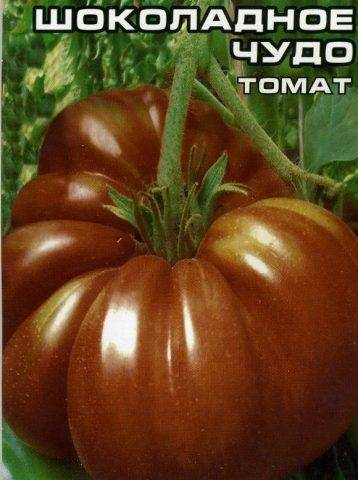 Томат шоколадное чудо: характеристика и описание сорта, выращивание из семян