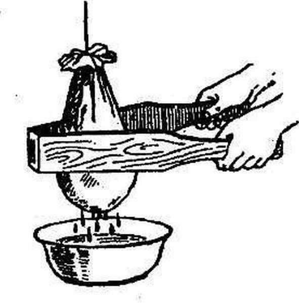 Пресс для отжима винограда своими руками: подробная инструкция и чертежи