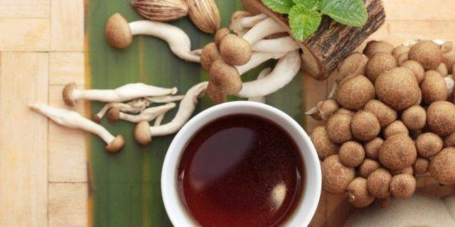 Уход за чайным грибом в домашних условиях: инструкция по выращиванию. как ухаживать за чайным грибом уход за чайным грибом в домашних условиях: инструкция по выращиванию. как ухаживать за чайным грибом