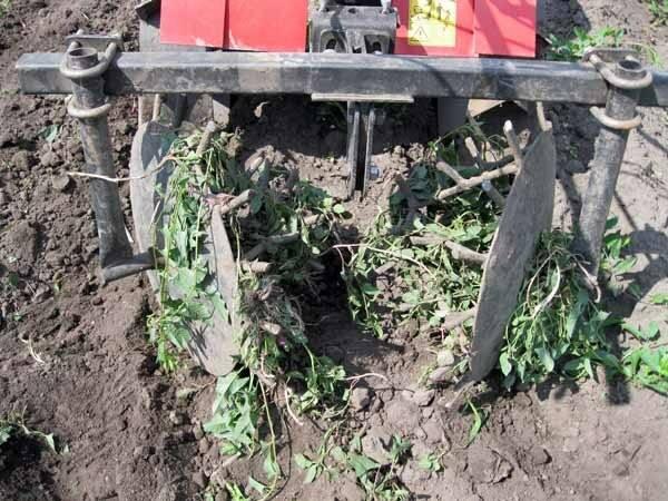 Как выглядит насадка на триммер для прополки картофеля и как правильно ею пользоваться
