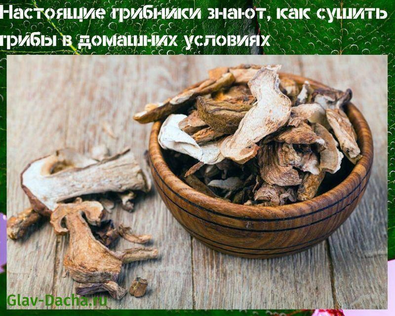 Как сушить грибы в духовке в домашних условиях правильно – температура