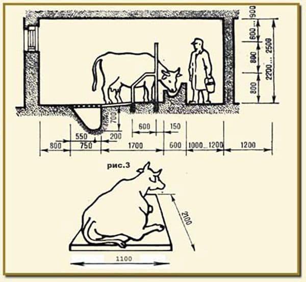 Кормушка для коров + фото, чертежи