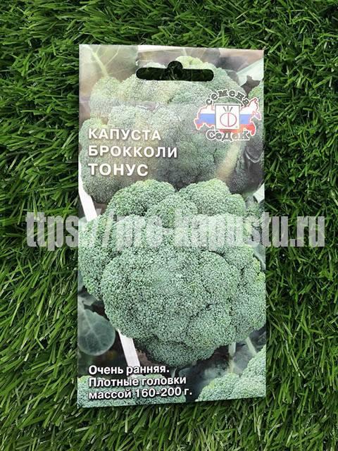 Капуста брокколи: выращивание и уход в открытом грунте - sadovnikam.ru