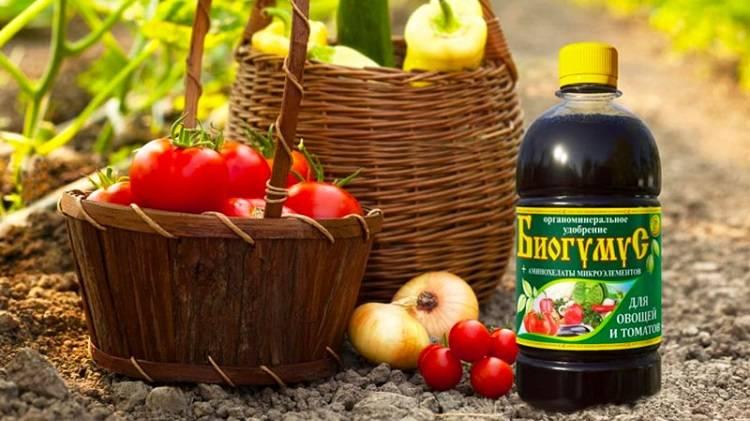 Производство и применение биогумуса в садоводстве