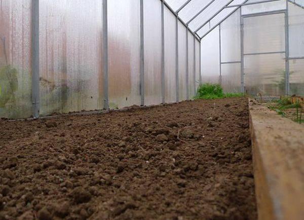 Как правильно подготовить почвогрунт для теплицы