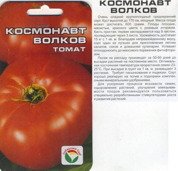 Томат космонавт волков: описание и характеристика сорта, фото, отзывы, урожайность, видео