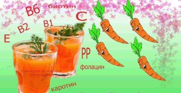 Эфирное масло семян моркови — применение и свойства морковного масла