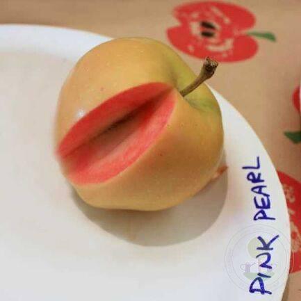 Характеристика яблок розовый жемчуг
