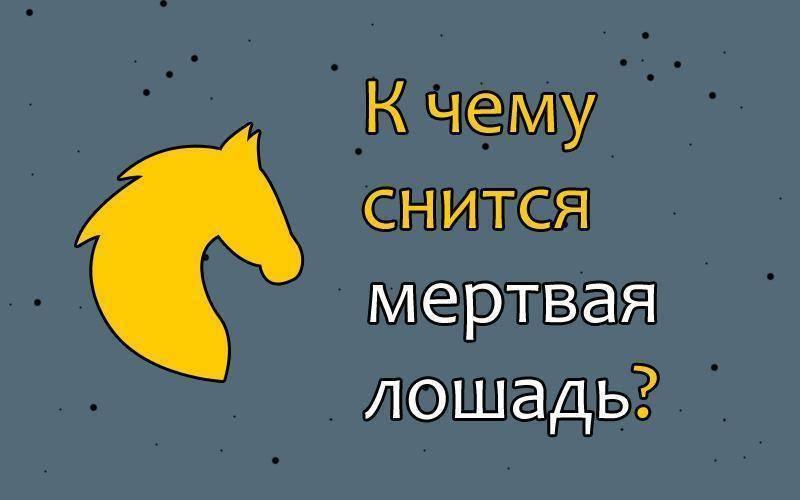 Сонник скачу на лошади. к чему снится скачу на лошади видеть во сне - сонник дома солнца