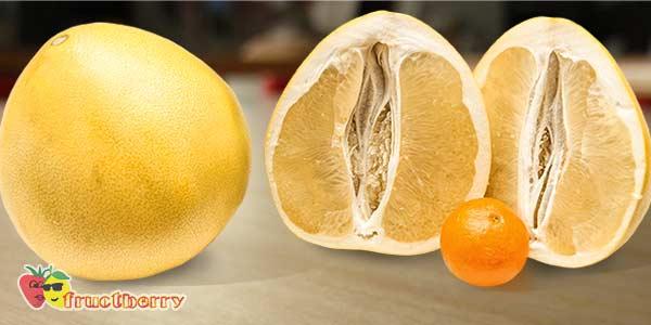Памела: характеристики фрукта и сколько в нем калорий