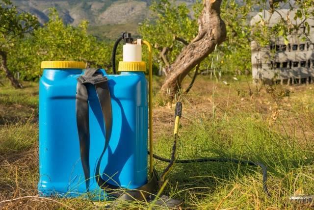 Как использовать агрокиллер для избавления дачи от сорняков