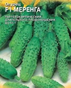 Сорт огурцов миранда: описание, фото, отзывы