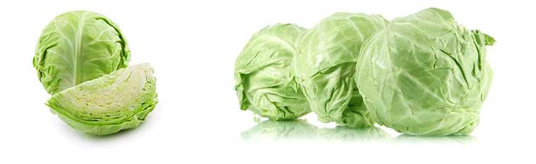 Белокочанная капуста — польза и вред