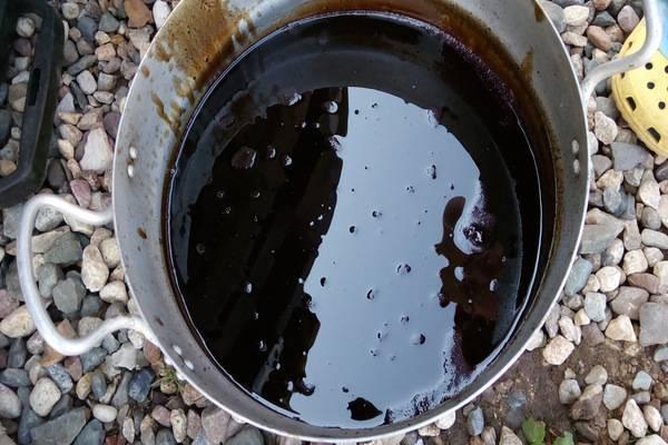 Биогумус (жидкий): инструкция по применению, как пользоваться для рассады, что это такое, отзывы