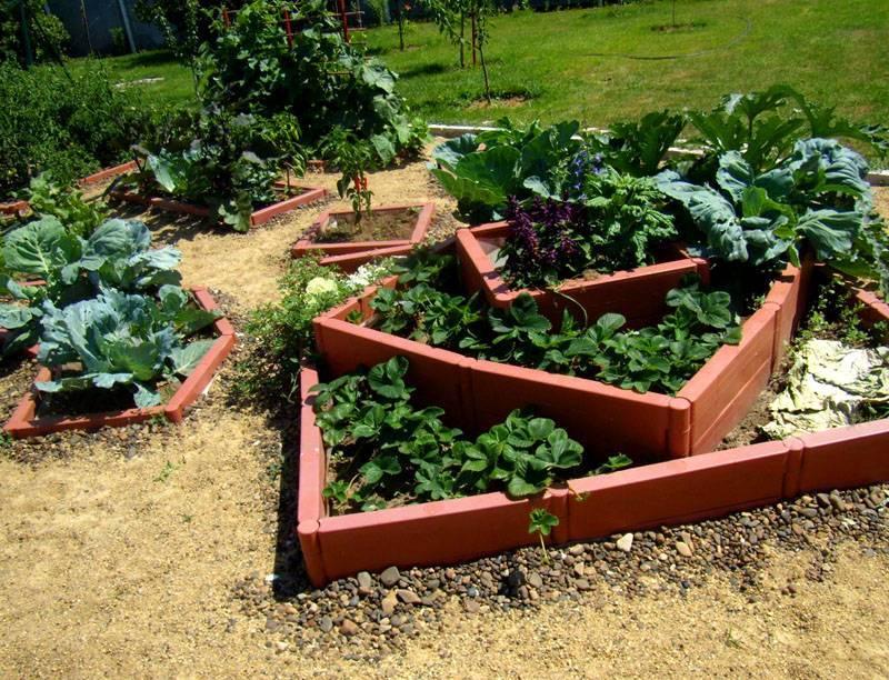 Как оформить огород на дачном участке красиво своими руками: 130 фото примеров и видео описание выполнения проектов