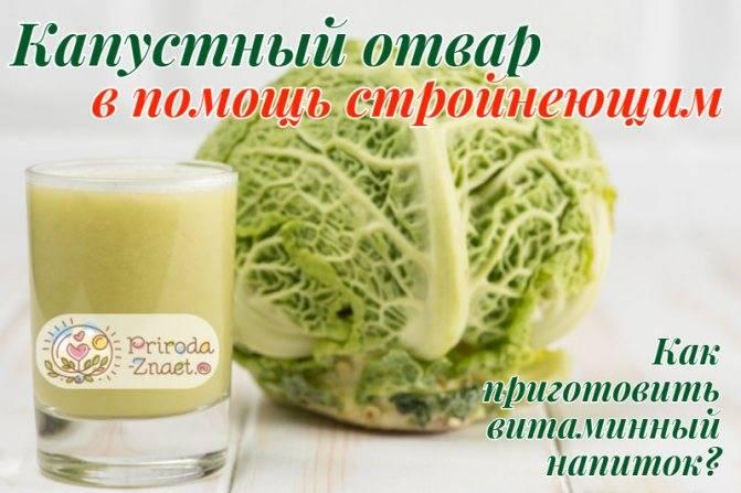Польза и вред белокочанной капусты. только факты — проовощи.ру