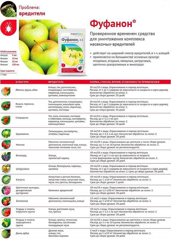 Препарат фуфанон: назначение и преимущества, инструкция по применению, меры безопасности