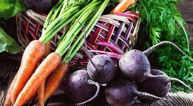 Чем подкормить морковь и свеклу в открытом грунте?