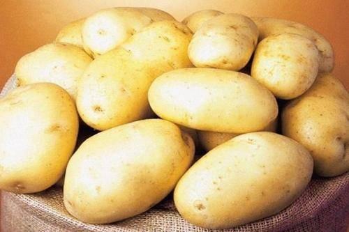 Урожайный и неприхотливый сорт картофеля лабелла: описание и фото, нюансы выращивания