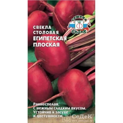 Свёкла — полезные свойства, сортотипы, лучшие сорта. фото — ботаничка.ru