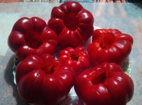 Перец гогошары: описание сорта, отзывы, фото, характеристика плодов, достоинства и недостатки