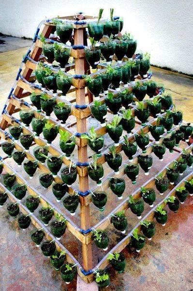 Грядки для клубники: как сделать вертикальные, в виде пирамиды, подвесные и многоярусные