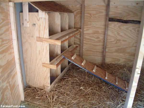 Гнездо для индюшки своими руками: размеры, инструкции по строительству