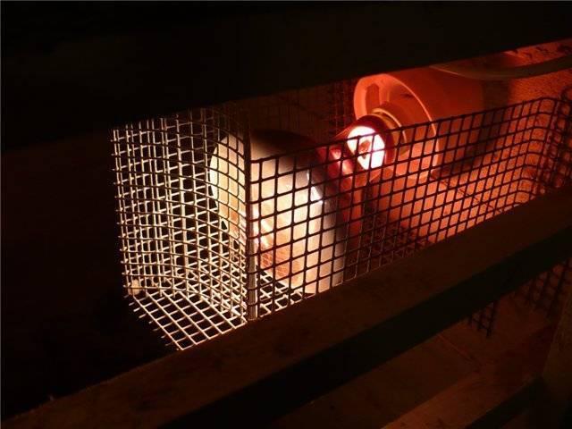 Инфракрасная лампа для курятника