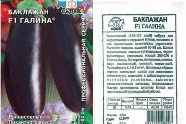 Баклажан галинэ (галине) f1: характеристика и описание сорта, фото, отзывы