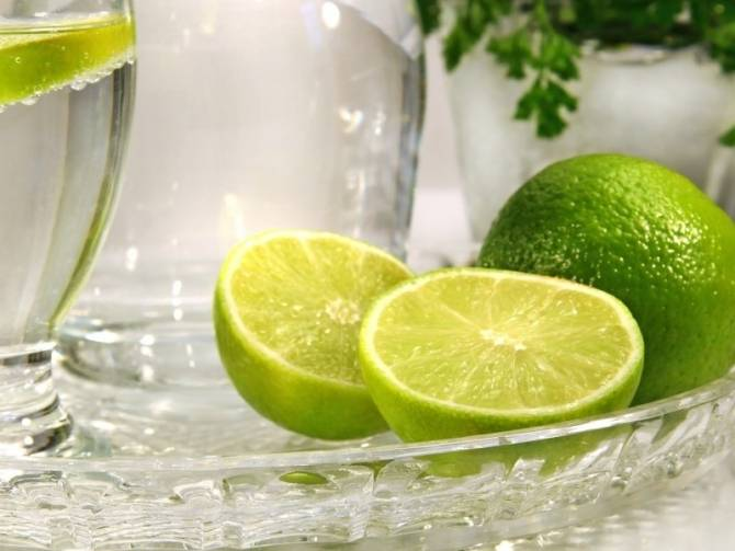 Драцена лемон лайм: фото, уход в домашних условиях, размножение