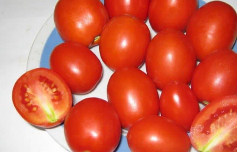 Томат маруся: описание и характеристика сорта, особенности выращивания, сроки посева на рассаду, отзывы, фото