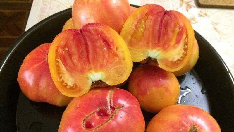 Томат медовый салют: характеристика и описание сорта с фото, урожайность помидора, отзывы