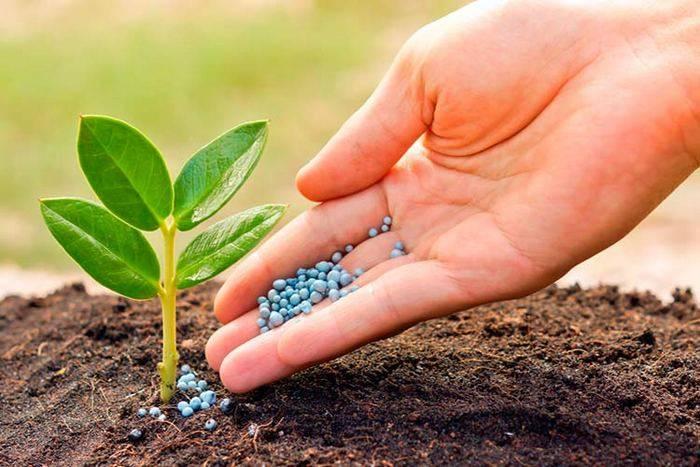 Стимуляторы роста растений - 19 предложений  в москве, сравнить цены и купить
